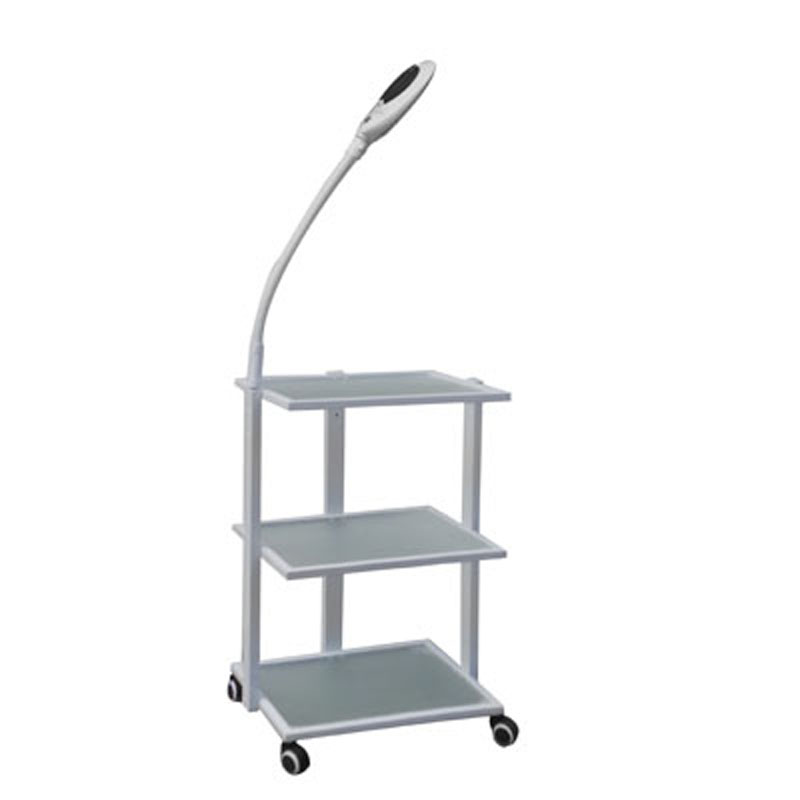 2 IN 1 Trolley & Magnifying WB-6307+663